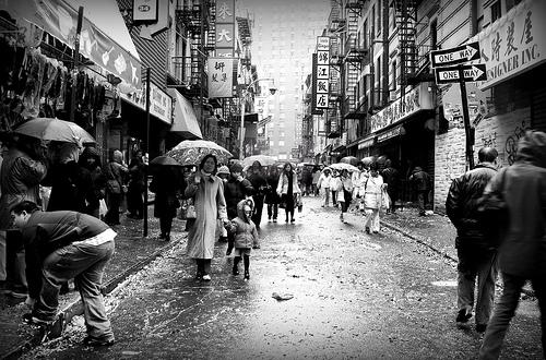 Raincelebrationgrippo_artworkimage